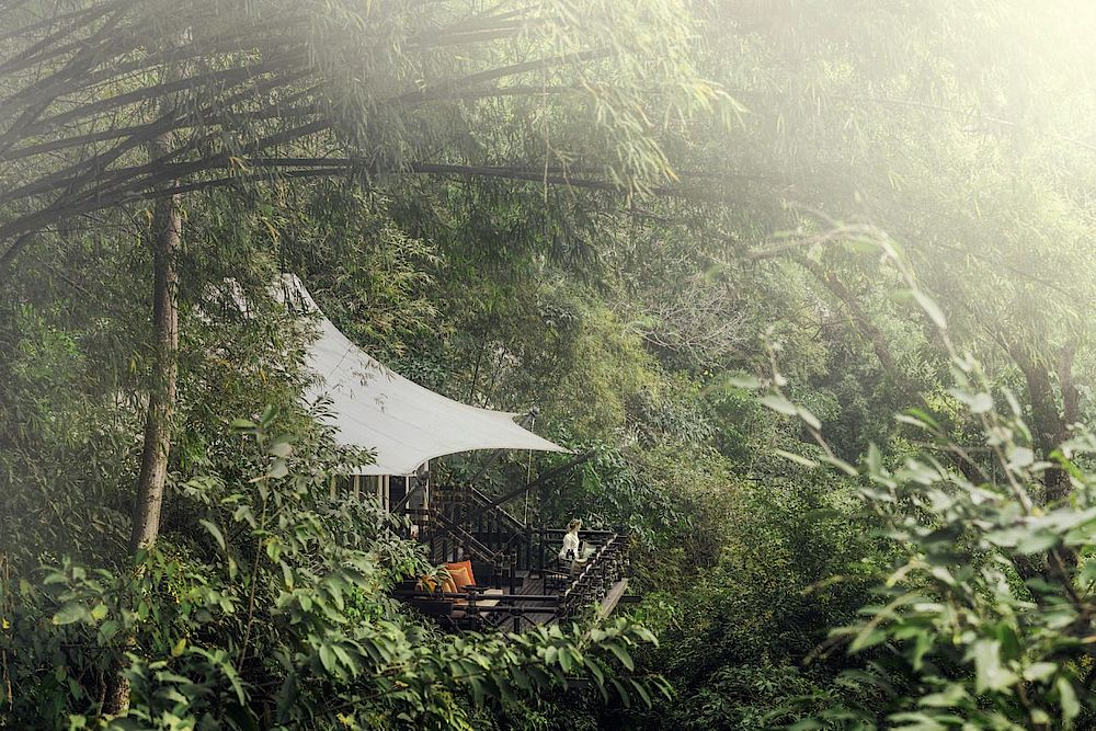 Superior Tent, Four Seasons Tented Camp Golden Triangle, Thailand Reise